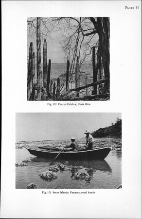 General account of the scientific work of the Velero III in the eastern Pacific, 1931-41