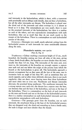 Hydroids of the 1932, 1933, 1935, and 1938 Allan Hancock Pacific Expeditions