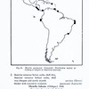 A report on the family Mytilidae (Pelecypoda)