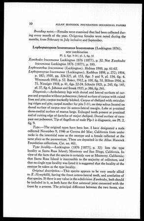 A revision of the Brachyuran genus Lophopanopeus
