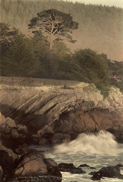 Sea Pine, Sea Ranch, California
