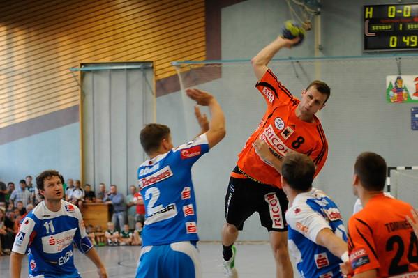 Handball 2013/2014