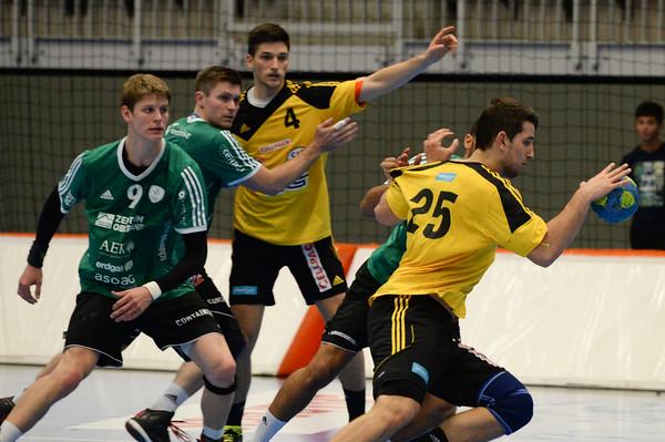 Handball 2015/2016