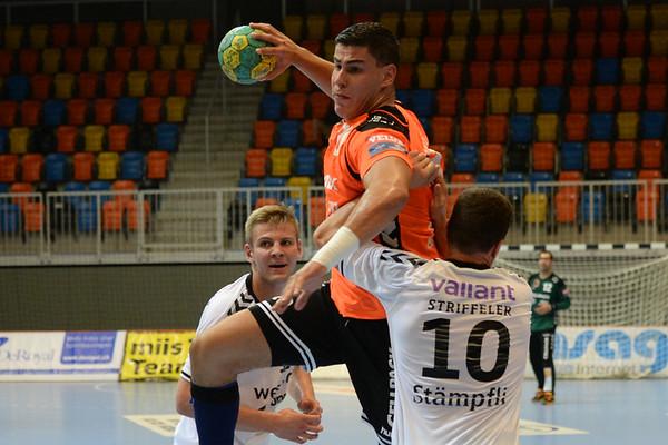 Handball 2016/2017