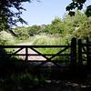 Bottoms Lane: Handbridge