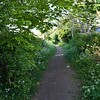 Pinfold Lane: Handbridge