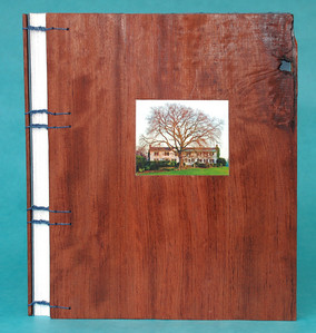 """Wooden cover of """"Trees"""" book showing inset photo placed in carved recess and Coptic sewing across spine. Note blue paper from first page showing through knot in babinga wood."""