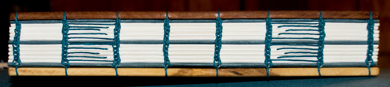 Coptic sewing across spine allows long book to lay flat wherever it is opened to easily view photographs.