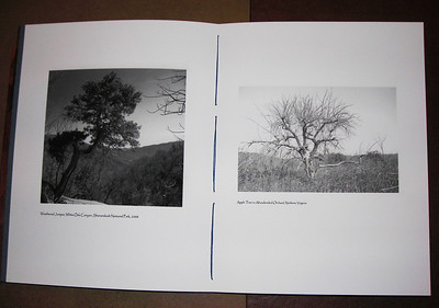 Adjacent pages of 8 1/2 x 11 tree book, made by printing both sides of 11 x 17 paper and folding.