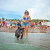 DSC05994 David Scarola Photography, FUrry Friends Dog Surf 2016, Event Photography in Palm Beach County