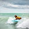 DSC05956 David Scarola Photography, Furry Friends Hang 20 Dog Surf 2016, Event Photography in Jupiter Florida