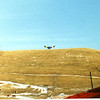 A lone glider in late winter with the ever present cows on the lower part of the south hill.