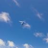 Blue Skys-95