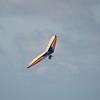 Labor Flight-61