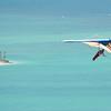 Labor Flight-63