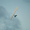 Labor Flight-111