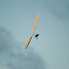 Labor Flight-110