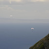 Hang Gliders and Paragliders over Makapuu-90