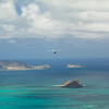 Hang Gliders and Paragliders over Makapuu-100