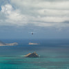 Hang Gliders and Paragliders over Makapuu-99