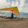 Hang Gliders and Paragliders over Makapuu-217
