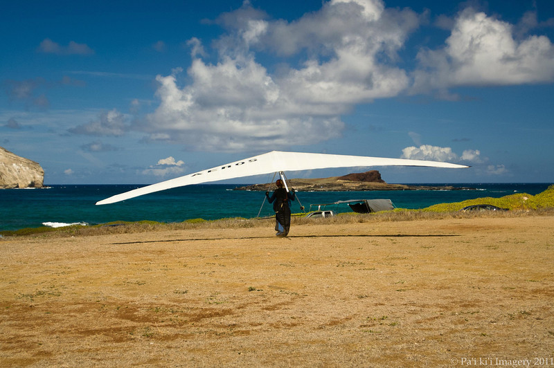 Hang Gliders and Paragliders over Makapuu-235