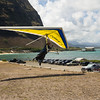 Hang Gliders and Paragliders over Makapuu-229