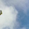 Secong  Flight-88