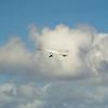 Secong  Flight-148