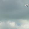 Secong  Flight-153