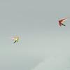 Cloudy Day Flyin-84