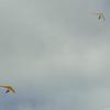 Cloudy Day Flyin-91