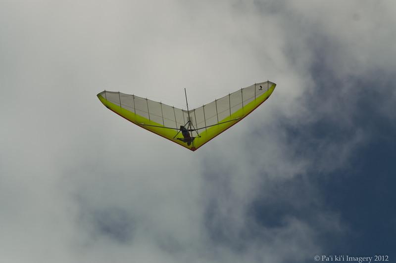 Cloudy Day Flyin-100