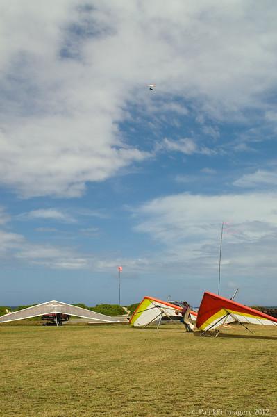 Cloudy Day Flyin-155