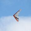 Hilo Flier-80