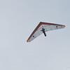 Hilo Flier-74