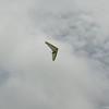 Overcast Flying-17