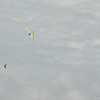 Overcast Flying-85