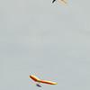 Overcast Flying-72
