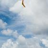 Overcast Flying-138