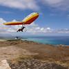 Da Maui Boys - Episode 1-359