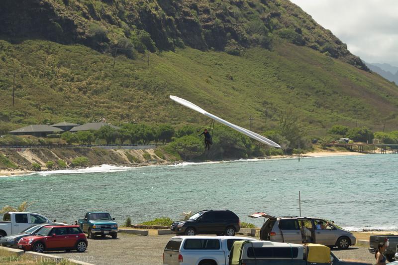Da Maui Boys - Episode 1-518