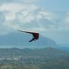 Sunday Flight w Maui Boys-45