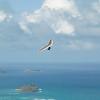 Sunday Flight w Maui Boys-46