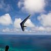 Sunday Flight w Maui Boys-76