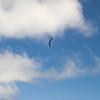 Sunday Flight w Maui Boys-184