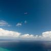 Flying Companions-9