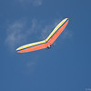 Flying Companions-234