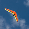 Flying Companions-233