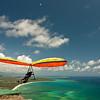 High Flyin-95